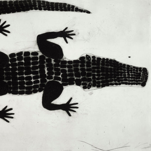 Buy 'Alligator' a black and white mixed media print by Kate Boxer. Image shows a black and white print of an alligator emerging into view from the left.
