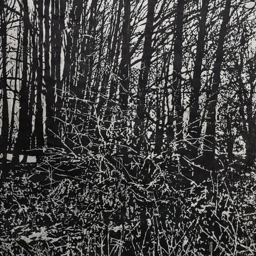Image shows a cropped section of a black and white wood engraving print by Tony Carlton.