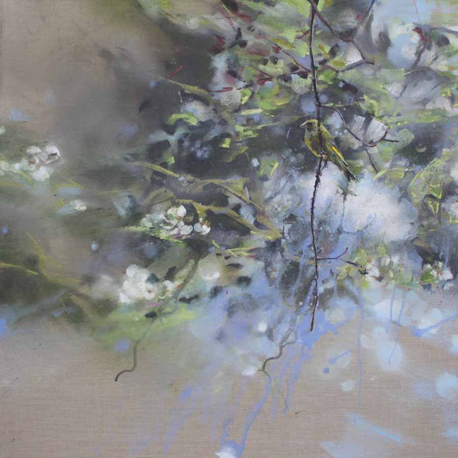 Buy 'Greenfinch, Pear Blossom', an original painting by James Fotheringhame at The Biscuit Factory, Newcastle Upon Tyne.
