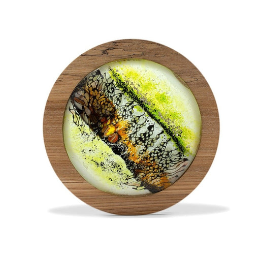 Buy 'Rockpool III', a handmade lighted piece made from glass and wood by Helen Grierson. Image shows a decorative circular glass sculpture coloured with green, black and orange, framed in wood. The sculpture sits on a white background.