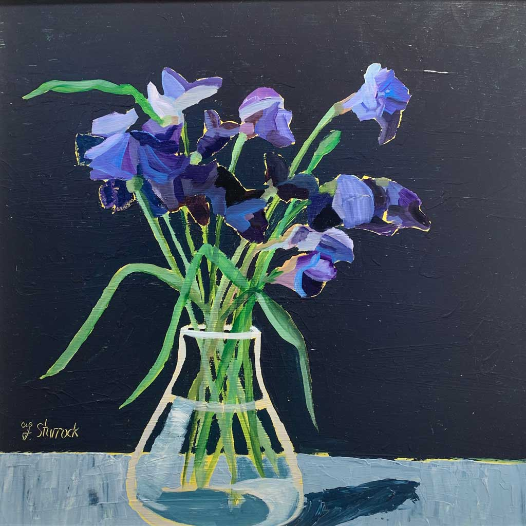 Buy 'Irises' an original still life painting by Fiona Sturrock at The Biscuit Factory