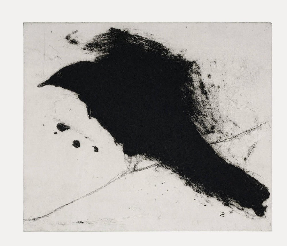 Buy 'Cuckoo' a large mixed media print by Kate Boxer. Image shows a large black abstracted bird with a smudged outline upon a pale grey background. The paper can be seen in contrast with the piece as a border around the edge.