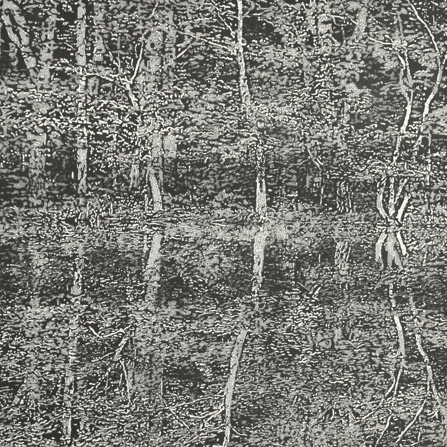 Buy 'Reflections I', an original mixed media artwork by Trevor Price at The Biscuit Factory. Image shows a monochrome print of a forest of trees reflected symmetrically below at the centre point of the print