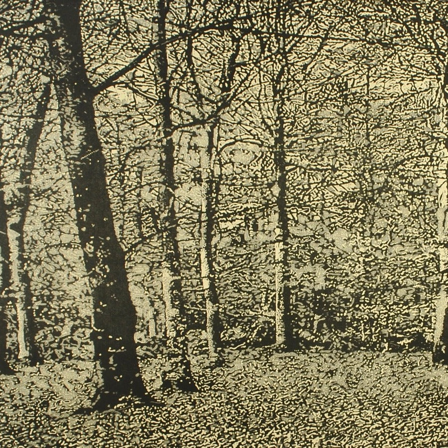 Buy 'The Beach Wood', an original mixed media artwork by Trevor Price. Image shows a detail shot of a monochrome print of a dense forest.