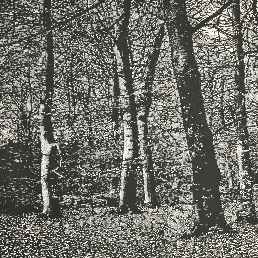 Buy 'Woodland I', an original mixed media artwork by Trevor Price. Image shows a square black and white print of a dense forest scene