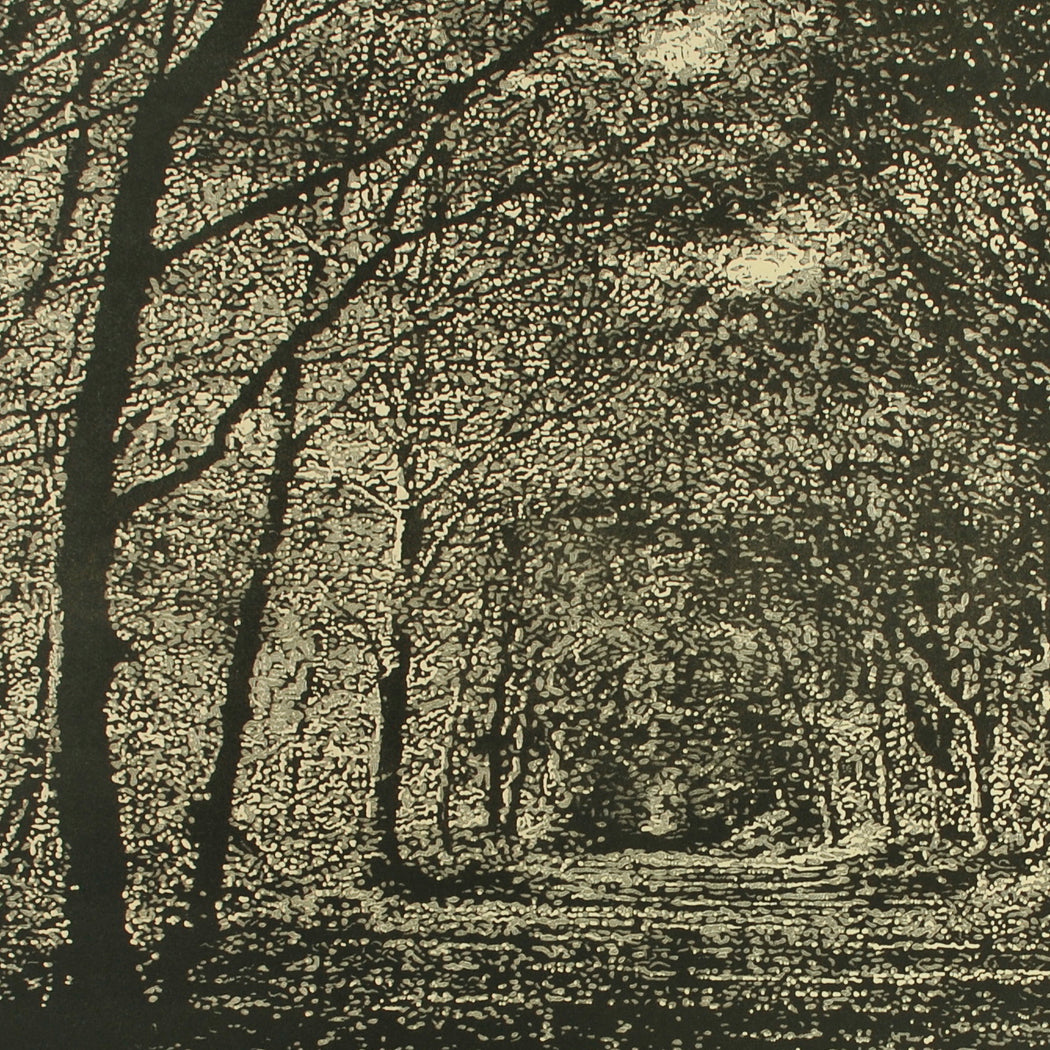 Buy 'Woodland Walk', an original mixed media artwork by Trevor Price. Image shows a detail shot of a larger monochrome print of a dense forest scene with a pathway leading into the centre of the print.