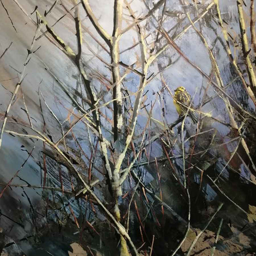 Buy 'Yellowhammer, Hedgerow', an original painting by James Fotheringhame at The Biscuit Factory, Newcastle Upon Tyne.