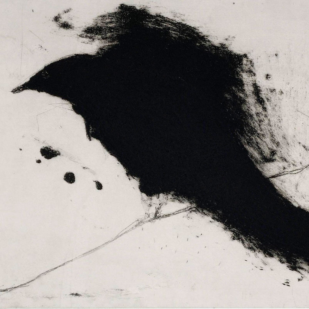 Buy 'Cuckoo' a large mixed media print by Kate Boxer. Image shows a large black abstracted bird with a smudged outline upon a pale grey background.