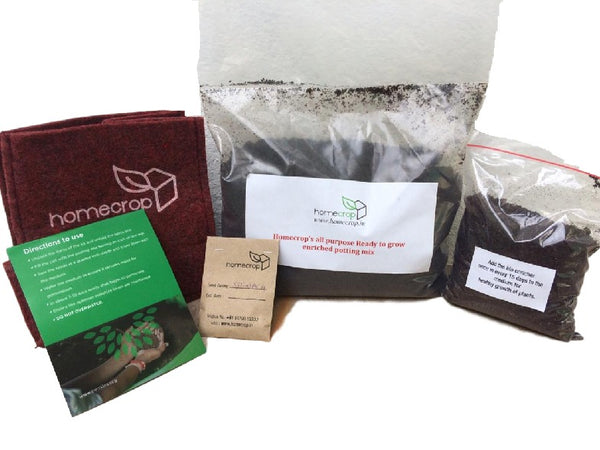 Home Crop - DIY Edible Green Kit