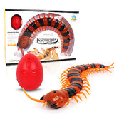 Remote controlled centipede pet toy