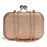 Glitter sparkling clutch purse
