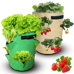 Fruit and vegetables grow bag