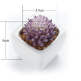 Artificial succulent plant home decor