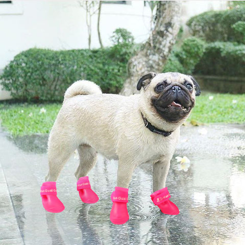 Rain & mud shoes for dogs