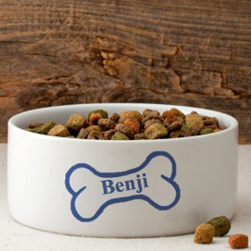Colorful Classic Small Dog Bowl