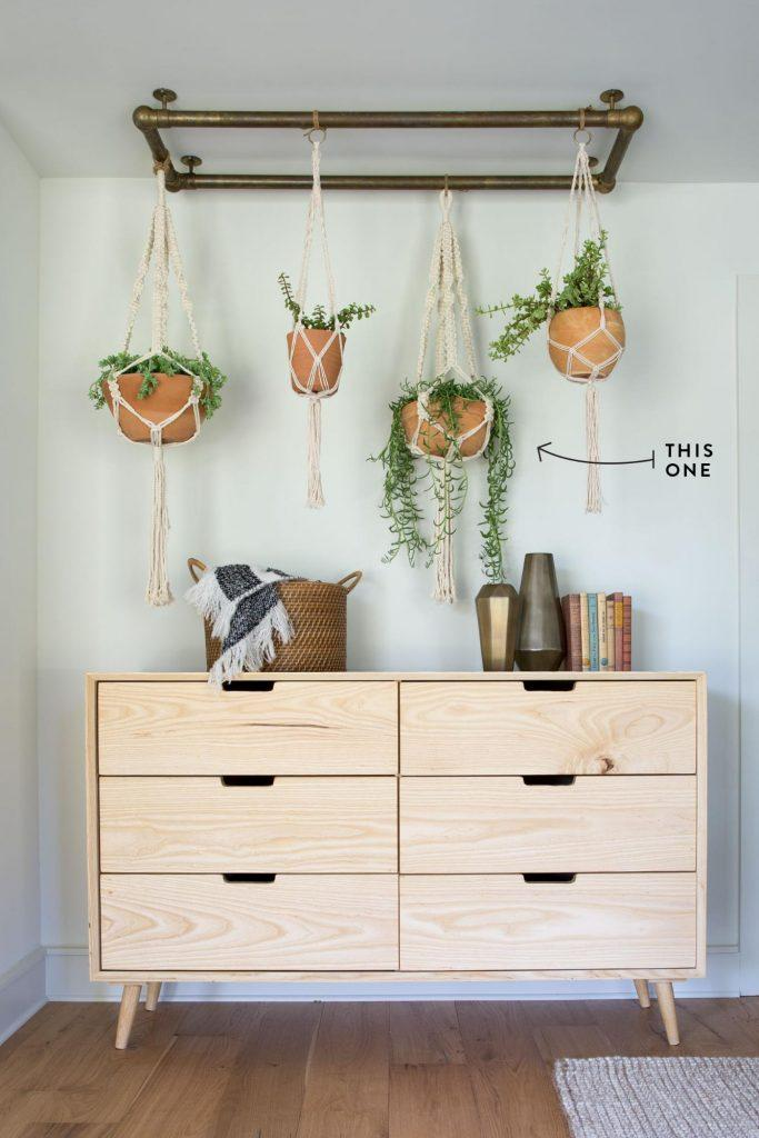 5 Ways to Decorate with Plants