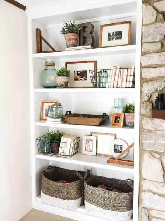 plants on shelves
