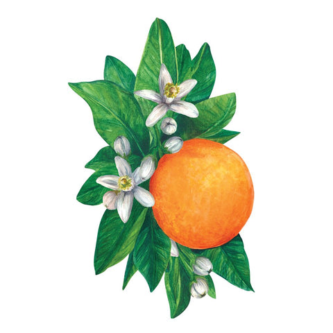 Orange place card
