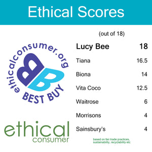image of ethical scores grid for coconut products