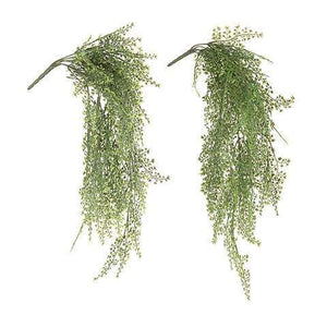 [shop name]|Maidenhair Hanging Bush- 29 inches:Florals & Accessories