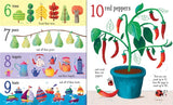 Usborne: Big Picture Book: Count to 100