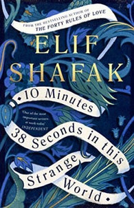 10 Minutes 38 Seconds in this Strange World (Hardback)