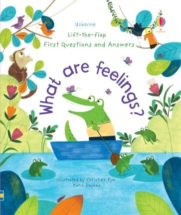 Usborne Lift-the-flap What are feelings?