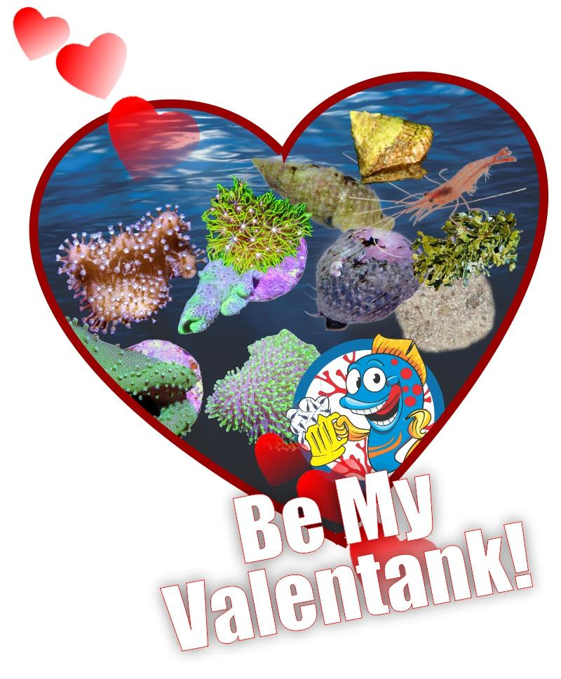 Be My ValenTANK