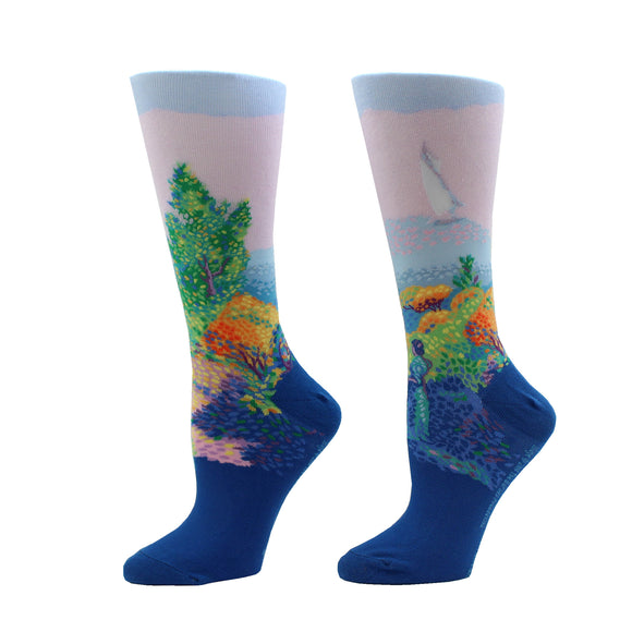 "Artwork Socks: Henri Edmond Cross' ""Two Women by the Shore, Mediterranean"""