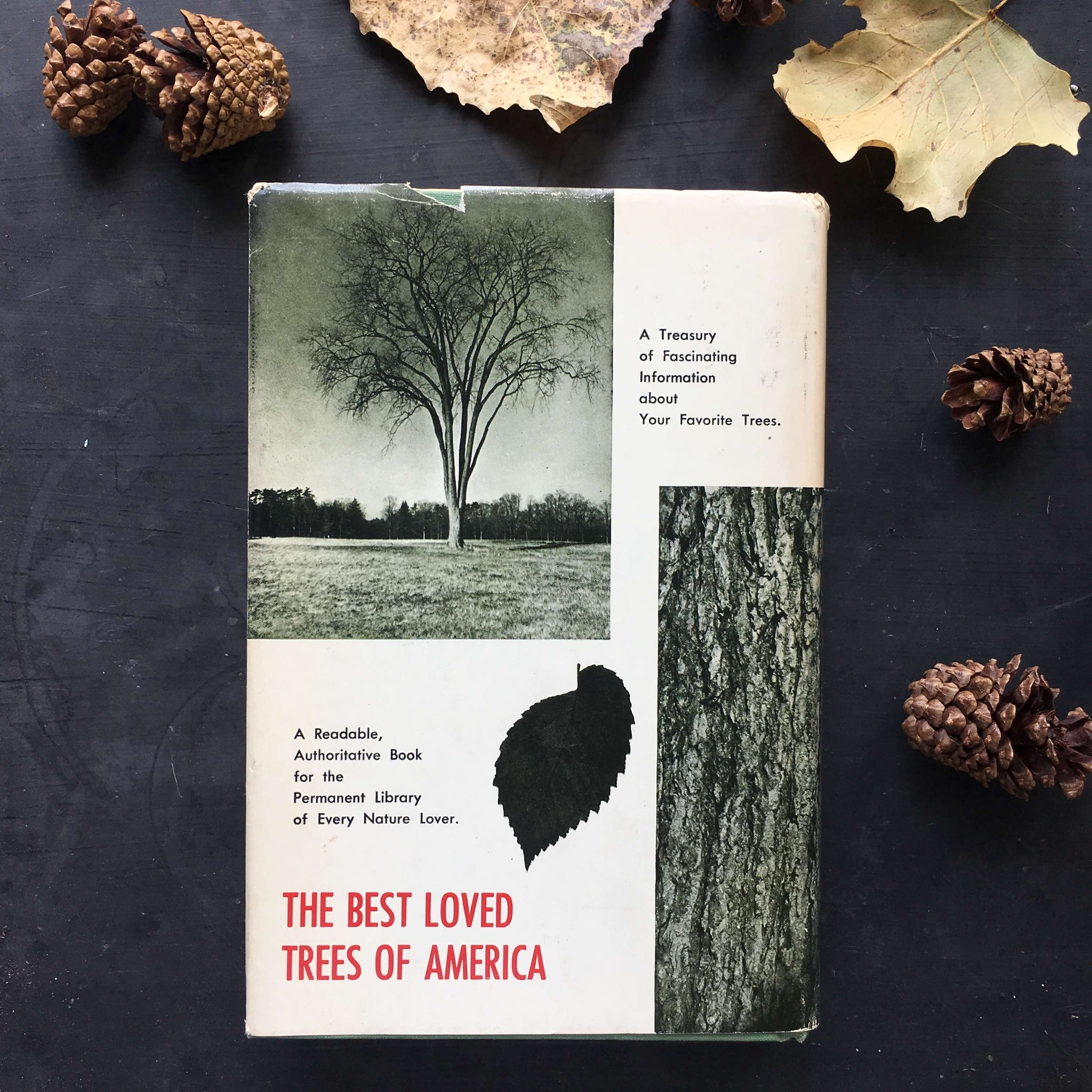 The Best Loved Trees of America - Robert S. Lemmon - 1973 American Garden Guild Book Club Edition