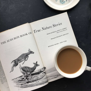 The Audubon Book of True Stories