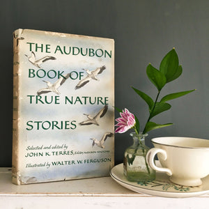 Vintage 1950s audubon bird book and nature stories