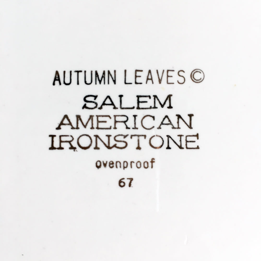 Vintage 1960's Autumn Leaves Dinner Plate - Salem American Ironstone 1967