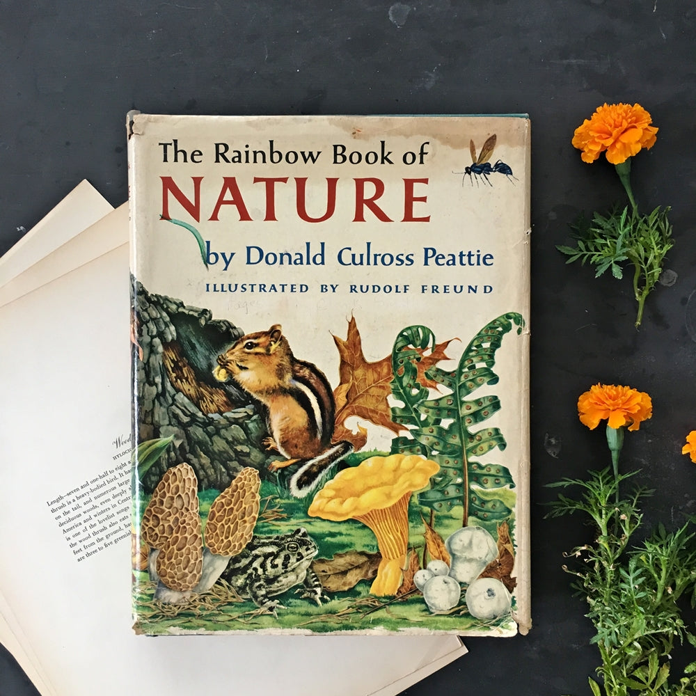 The Rainbow Book of Nature by Donald Culross Peattie - 1957 First Edition Children's Book