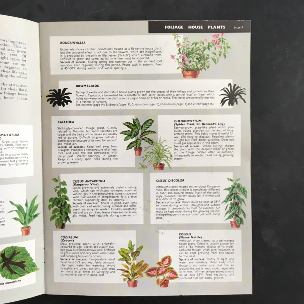 Be Your Own House Plant Expert - Dr. D.G. Hessayon - 1970s Indoor Garden Manual - 2nd Edition