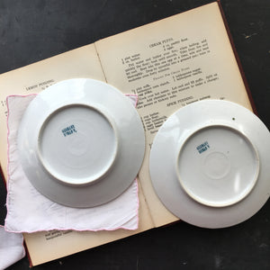 Two Vintage Germany Roman V Bread and Butter Plates - Bavaria Rose Pattern - Made in Germany