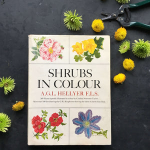 Vintage 1960s Gardening Book - Shrubs in Colour - AGL Hellyer - 1966 Edition