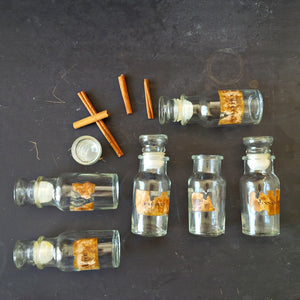 Vintage Glass Spice Bottles - 1970's Kitchen Storage Apothecary Botanical Specimen Bottles - Made in Taiwan