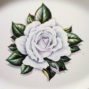Homer Laughlin Windsor Rose Platter -1950's White Rose and Gold Filigree Platter - Liberty Shape G51 N6