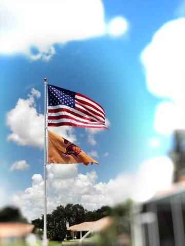 pictures of flags from flag pole review testimonial