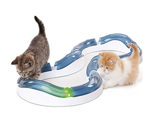 Interactive Cat Toy Track with Ball by Catit