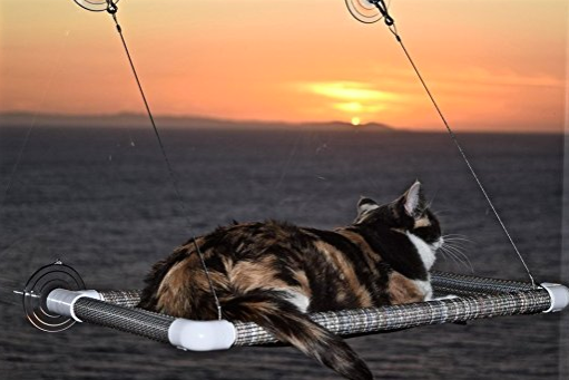 Window Cat Hammock by Kitty Cot