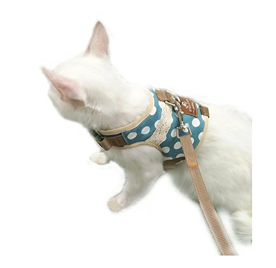 Designer Cat Harness by Evelove