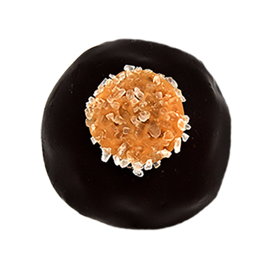 Sea Salt Dark Caramel Delight Truffle