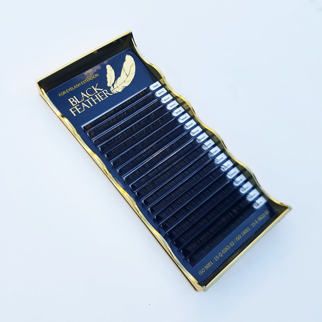 Black Feather Lash Pallet     -     SC CURL