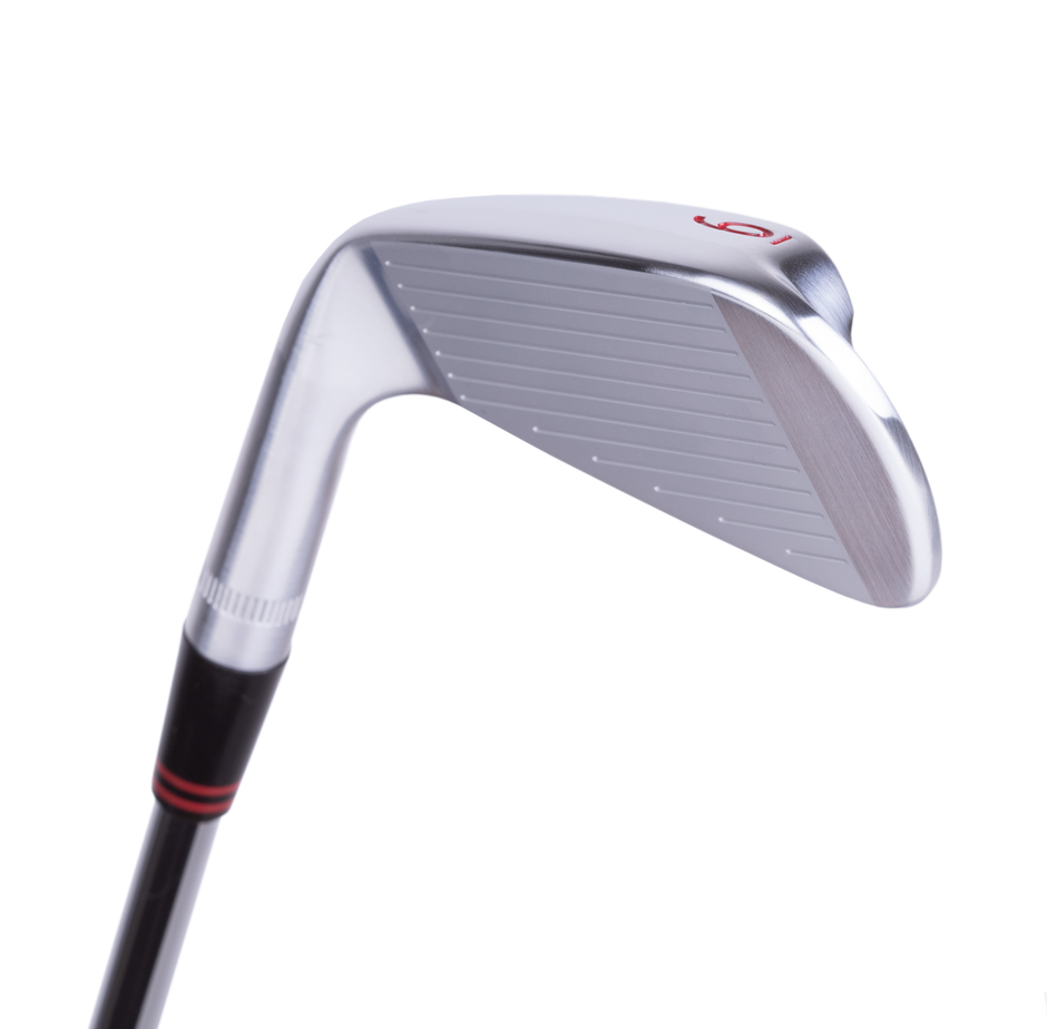 Demo ICON Irons (2 Clubs)