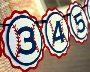 1st Birthday Photo Banner - Baseball Party Decoration