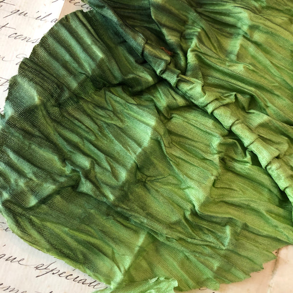 Green Ombré Pleated Cabbage ? Leaves