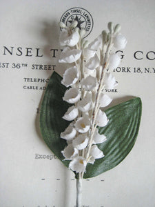 Lily of The Valley W/Leaves