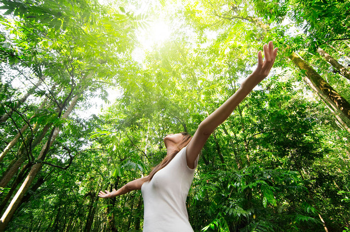 5 Secrets to Achieving Better Energy Naturally